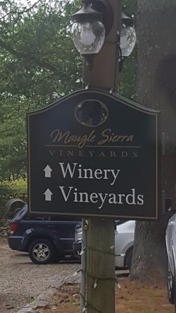 Ledyard, CT: Winery