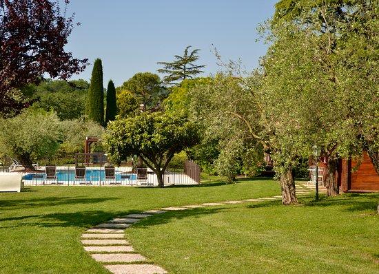 """Puegnago sul Garda, Italia: La piscina e lo """"spazio verde"""" che circonda il B&B"""