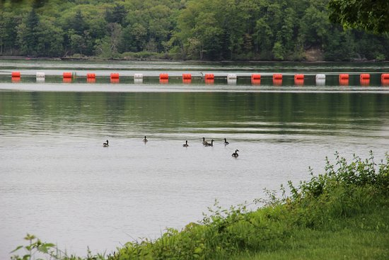 Turners Falls, MA: Reservoir behind the dam