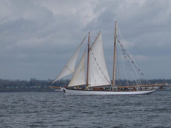 Bellingham, WA: we had a great day sailing