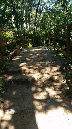 Starved Rock State Park: Wooden bridge