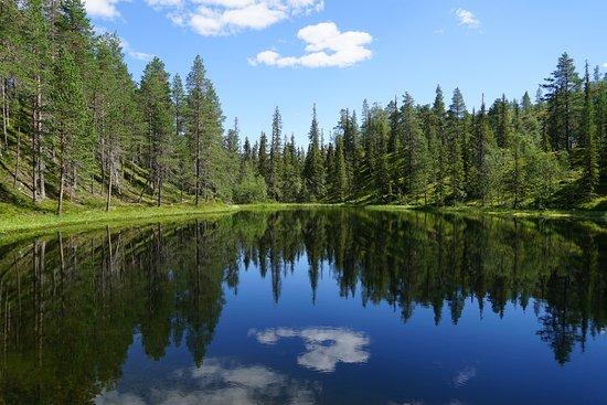 Luosto, Finlande : photo8.jpg
