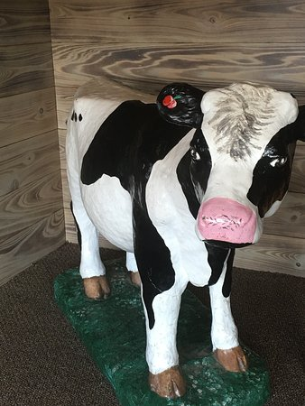 Aurora, IL: There's always a cow to greet you when you come in!