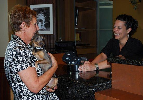 Berthierville, Kanada: Animaux de compagnie sont les bienvenus