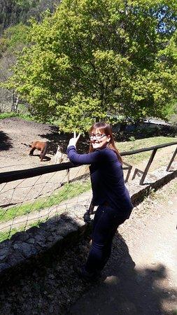 Cabeceiras de Basto, Πορτογαλία: 20160425_122408_large.jpg