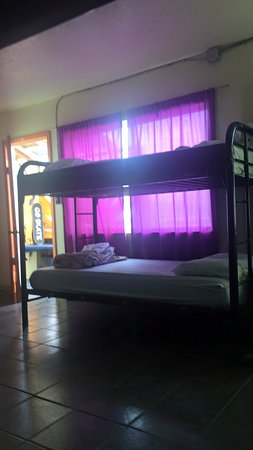 Beach Bungalow Hostel: photo2.jpg