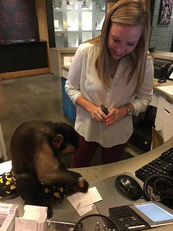 aloft Plano : Sasha helped the Desk Clerk get us checked-in