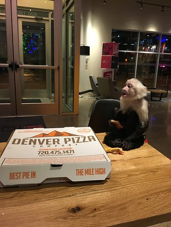 Dining in the lobby on great pizza