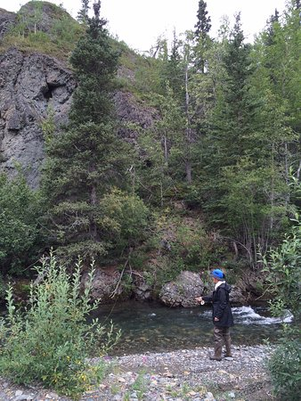 Cantwell, Аляска: Nice stream.