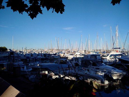 Golfe-Juan-Vallauris, França: La vista su Port Camille Rayon