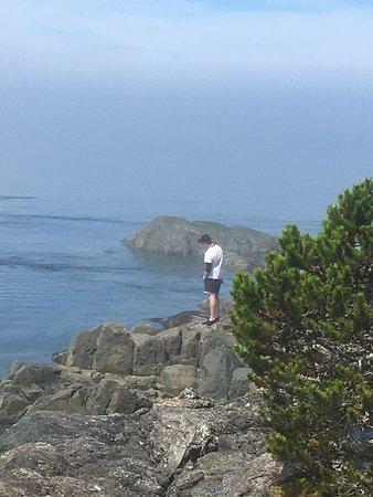 Telegraph Cove, Canada: View of Johnston Straight