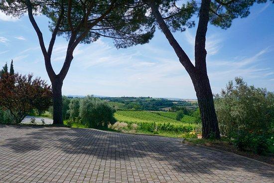 Petrignano, إيطاليا: Views