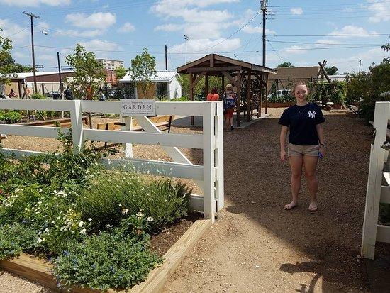 Waco, TX: Garden