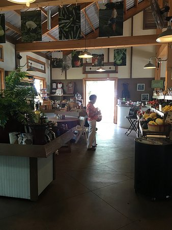 Auburn, AL: Market