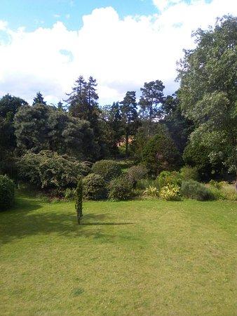 Thorpe le Soken, UK: IMG_20160702_162543_large.jpg
