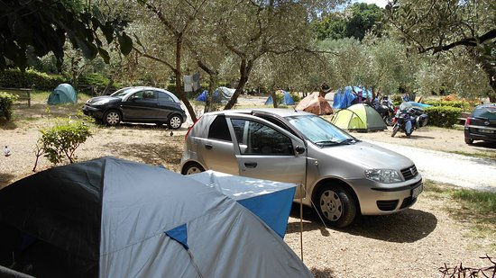 Plus Camping Michelangelo: Pitch