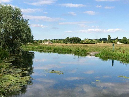Sudbury, UK: Henny Swan