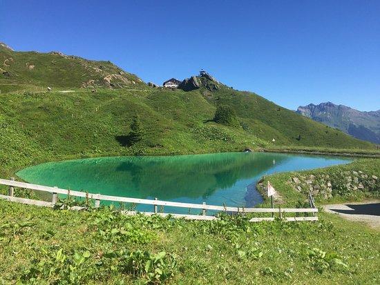 Jungfrau Region, Suiza: Beautiful !