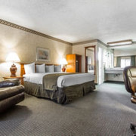 Quality Inn & Suites Silicon Valley: King room