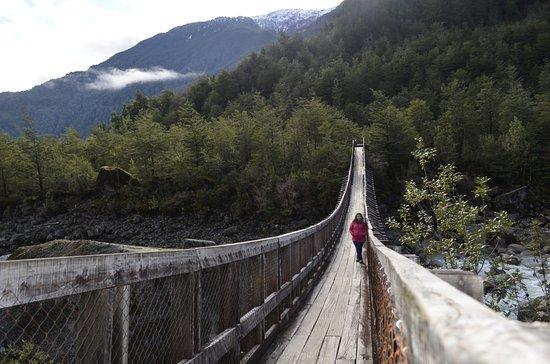 Puyuhuapi, Chile: Sendero hacia el ventisquero colgante, camino a las termas.