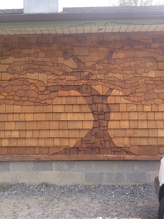 Cedar Mountain, Carolina del Norte: Cedar Tree Image By The Front Of Cafe