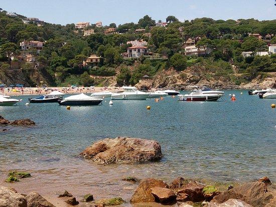 Begur, España: Seul bémol : un peu trop de bâteaux, trop prés des côtes.
