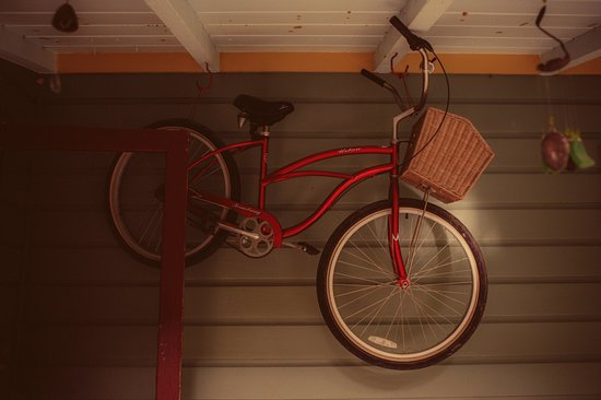 Park Lane Guest House: Bicycles for rent!