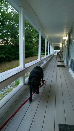 Freeport, ME: Deck on lower level, especially for traveling dogs