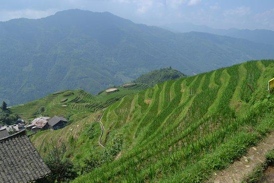 Yangshuo Tour - WinWin Travels