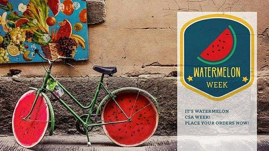 Millersville, MD: This week's Menu is Watermelon Week