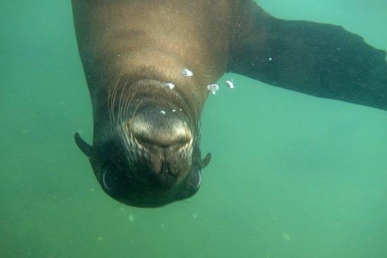 Walvis Bay, Namibia: Hello