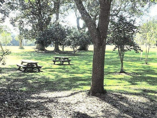 Mount Pleasant, Carolina del Sur: picnic area