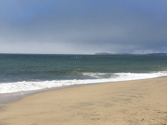 Poplar Beach: Saw a whale and possibly a sea lion. I appreciated the hourly parking as well!
