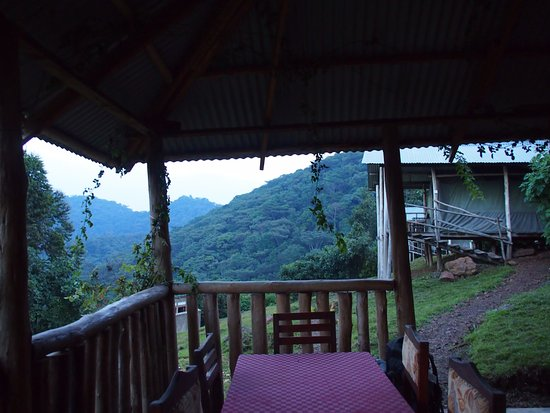 """Bwindi Impenetrable National Park, Uganda: looking at our bungalow from the """"dining room"""""""