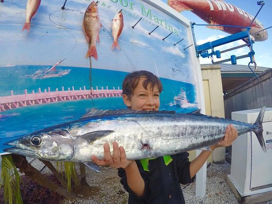 Boynton Beach Fishing Charter
