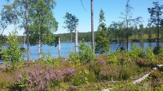 Årjäng, Sverige: Arjång