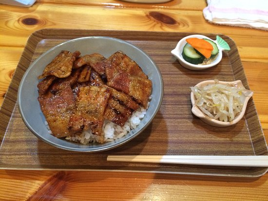 Sayama, Giappone: 豚丼きみお