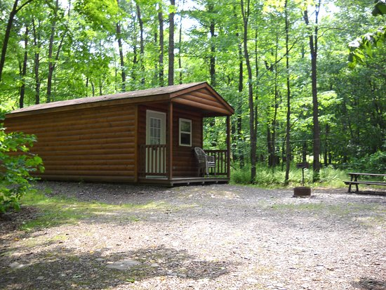 Covington, PA: Deluxe cabin sleeps 6.  Full bathroom, kitchenette with full size fridge.