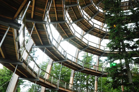 Neuschönau, Deutschland: Torre para subir