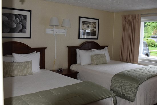 Moseley Cottage Inn and Town Motel: Motel Room - Double