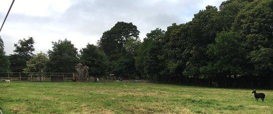 County Kilkenny, Irland: photo3.jpg