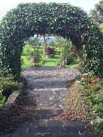 Turrialba, Costa Rica: Garden of the hotel