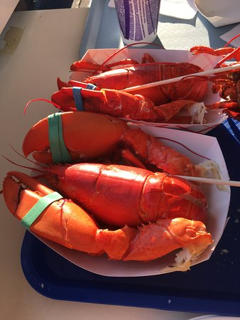 Seabrook, NH : Lobster on special 2@$20