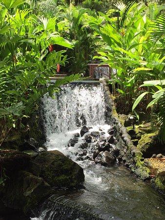 Tabacon Grand Spa Thermal Resort: photo4.jpg
