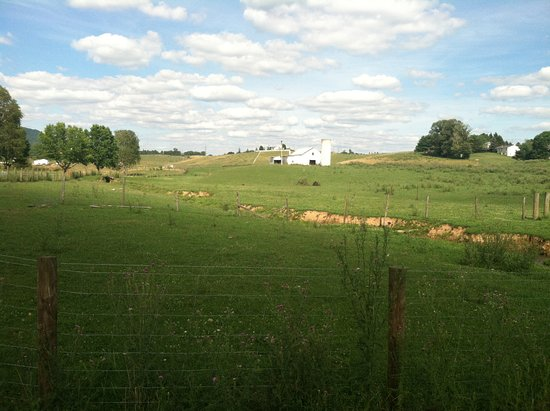 Fort Chiswell RV Park: Surrounded by beautiful farm country.