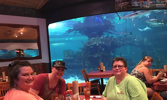 Litchfield Park, AZ: Dining near the large aquarium