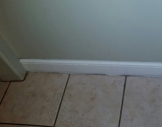 Inn at Camachee Harbor: Just a photo showing how nasty dirty the tile grout is and molding. Cleanser and a mop should fi
