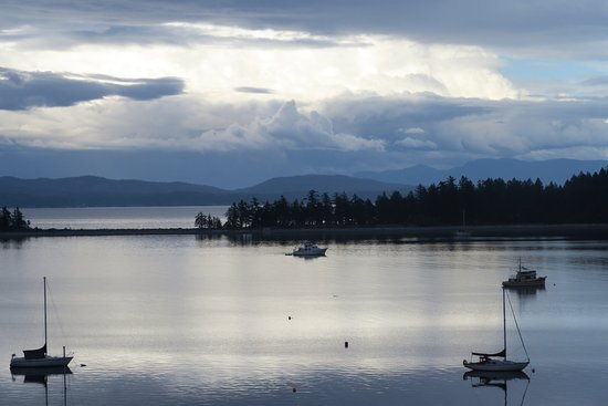 Quadra Island, Canada: Amazing view from room