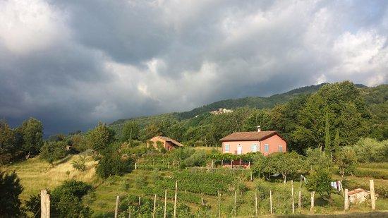 Molazzana, Italië: Looking towards the farmhouse
