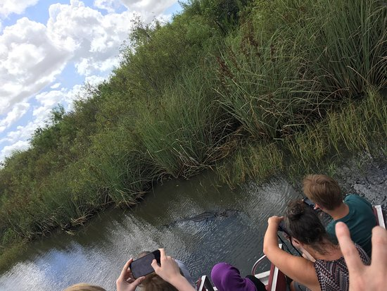 Coopertown Airboats: photo2.jpg